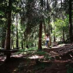 Waldspielplatz Familienhotel Huber