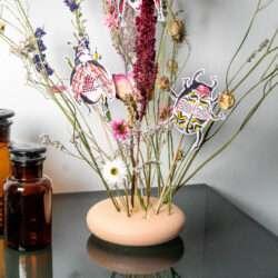Illustration Käfer mit Trockenblumen